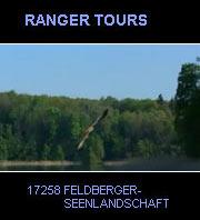 Den Naturpark Feldberger Seenlandschaft erleben