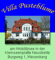 Villa Pusteblume in Wesenberg am Woblitzsee